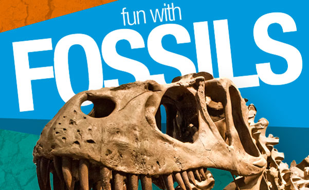 fun with fossils instructographic make your own fossils activity