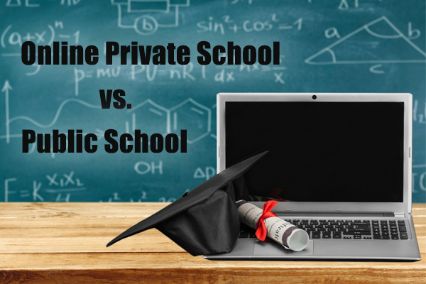 new arrival 543ec 00ba4 Differences between Public and Private Online School ...