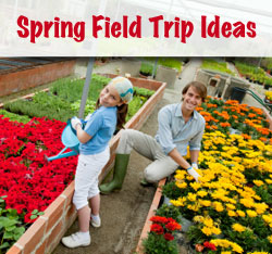 Spring Field Trip Ideas For Virtual School Students